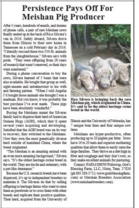 Meishan Pig Article Farm Show magazine